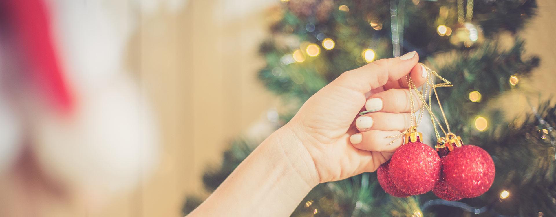 Hang with Us This Holiday Season!